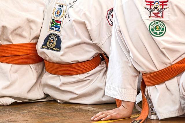 bojové umění karate