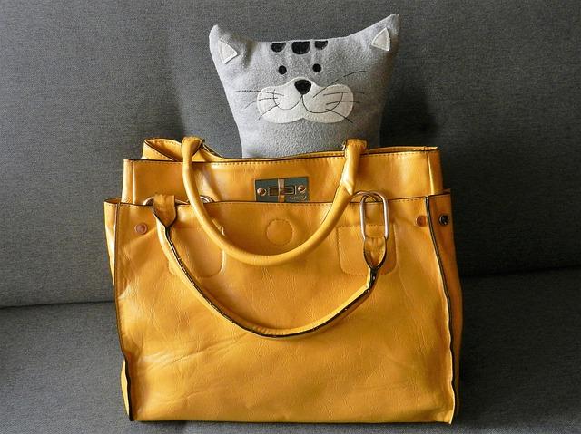 kočka  se žlutou kabelkou