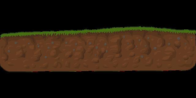 nízký trávník