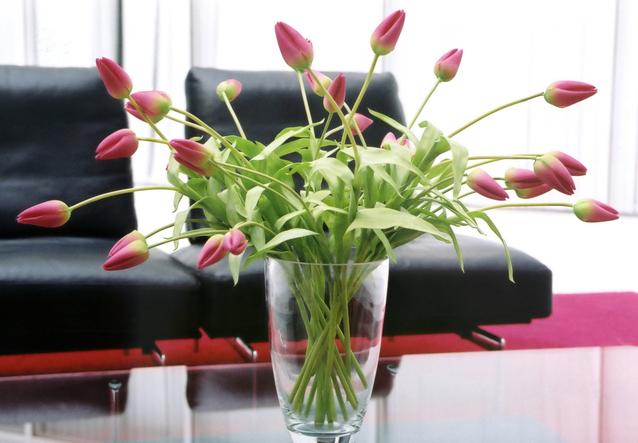 květiny ve váze na skleněném stole, v pozadí černá sedací souprava, jedná se o růžové zavřené tulipány