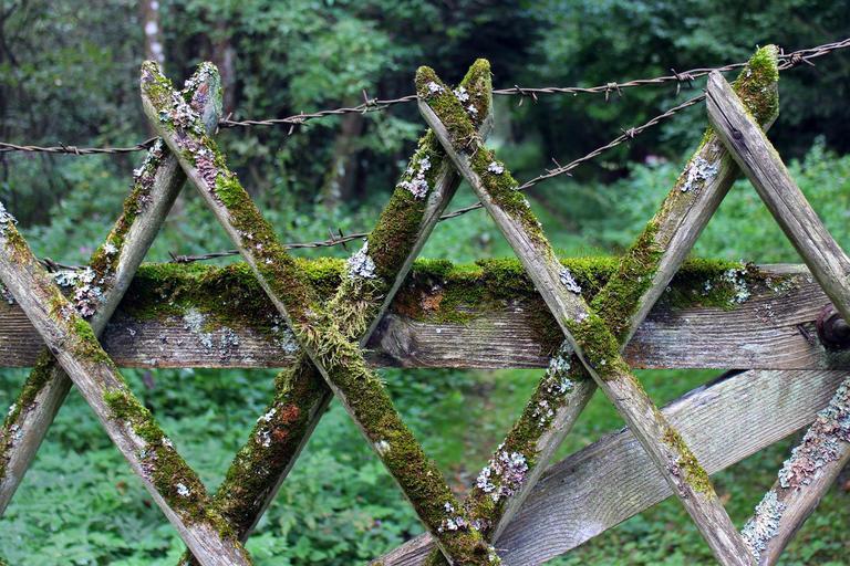 Obyčejný plot