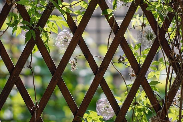 Nedílná součást domu-zahradní posezení